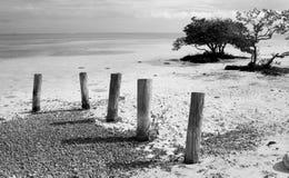 Штабелевки на пляже стоковые изображения