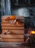 Штабелированные книги через дождливое окно стоковое изображение rf