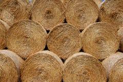Штабелированные bales сена Стоковые Изображения
