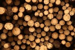 Штабелированная прерванная древесина на зима или конструкция как предпосылка Стоковая Фотография RF