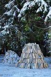 Штабелированная прерванная древесина подготовленная на зима Стоковые Изображения