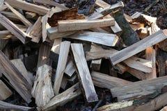 Штабелированный для древесины засыхания Стоковое Фото