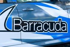 Штабы и логотип сетей барракуды Стоковые Изображения
