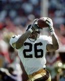 Штанга Woodson Питтсбург Steelers стоковые изображения rf