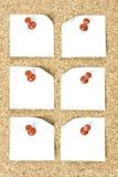 Штеккерная панель с бумагами Стоковые Фотографии RF