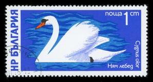 Штемпель почтового сбора серии ` водоплавающей птицы ` Болгарии, 1976 стоковое фото rf