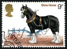 Штемпель почтового сбора Великобритании лошади графства Стоковое Изображение