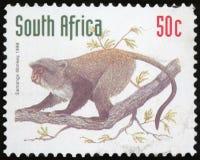 Штемпель почтового сбора - Южная Африка стоковое фото