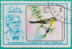 Штемпеля почтового сбора были напечатаны в Кубе Стоковое Фото