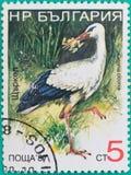 Штемпеля почтового сбора были напечатаны в Российской Федерации Стоковые Изображения RF