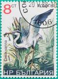 Штемпеля почтового сбора были напечатаны в Российской Федерации Стоковые Изображения