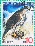 Штемпеля почтового сбора были напечатаны в Российской Федерации Стоковое фото RF