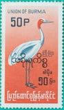Штемпеля почтового сбора были напечатаны в соединении Бирмы Стоковые Фото