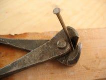 штендеры ногтя Стоковое Фото