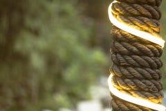 Штендер в оболочке с веревочкой и гирляндой на предпосылке зеленой листвы стоковая фотография rf