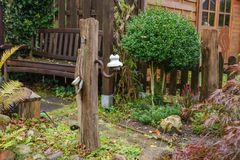 штендер дуба в саде Стоковое Фото