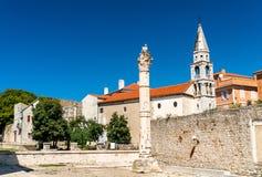 Штендер стыда, римский столбец в Zadar, Хорватии стоковое фото rf