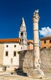 Штендер стыда, римский столбец в Zadar, Хорватии стоковая фотография rf