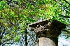 Штендер сада Стоковое Изображение RF