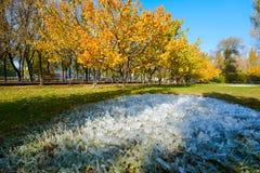 Штендер льда и листья осени Стоковое фото RF