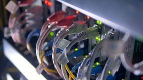 Штепсельная вилка кабелей к суперкомпьютеру для минирования cryptocurrency 4K акции видеоматериалы