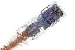 штепсельная вилка сети Стоковое Изображение