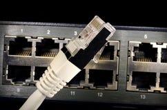 Штепсельная вилка и маршрутизатор сетевого подключения Стоковое Изображение RF