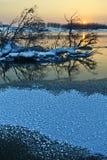 штилевая зима ландшафта стоковая фотография