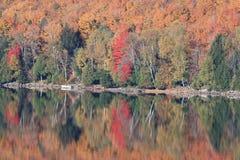 штилевое озеро ontario падения цветов над отражать Стоковые Изображения