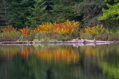 штилевое отражение озера стоковые изображения rf