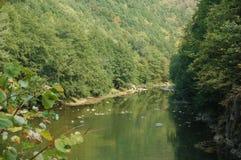 Штилевое река Стоковые Фотографии RF