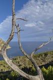 Штилевой залив Стоковые Изображения