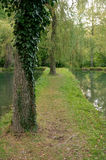штилевой пруд Стоковое фото RF