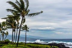 Шторм в Гаваи Стоковые Изображения