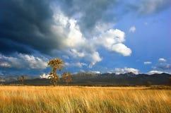 шторм гор ландшафта Стоковые Фото
