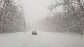 Шторм зимы в лесе Ostratu стоковые фотографии rf