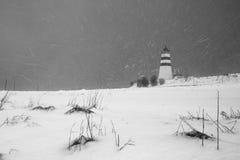 Шторм зимы Стоковые Фото