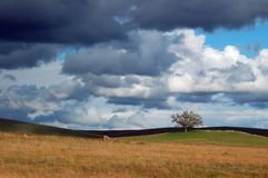 шторм края стоковая фотография rf