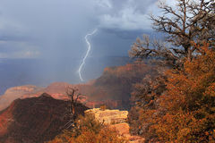 Шторм над грандиозным каньоном, США Стоковые Изображения RF