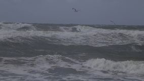 Шторм на Балтийском море видеоматериал