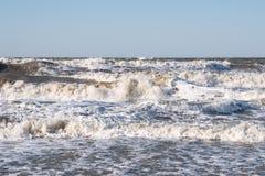Шторм на море Азова стоковое фото rf