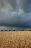 шторм облаков Стоковые Изображения RF