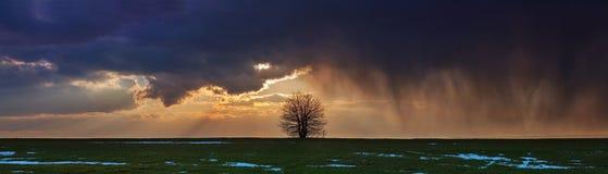 Шторм панорамы Стоковая Фотография RF
