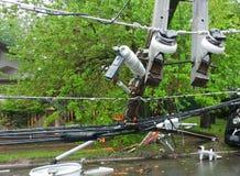 Шторм повредил электрический трансформатор на поляке и дереве стоковое изображение rf