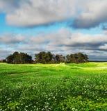 шторм поля облаков Стоковая Фотография RF