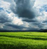 шторм поля облаков Стоковая Фотография