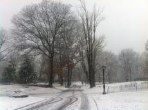 Шторм снега в Central Park - Нью-Йорке Стоковая Фотография