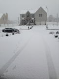 Шторм снега Стоковые Изображения