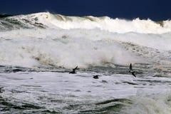 шторм Средиземного моря Стоковые Фотографии RF