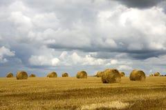 шторм хлебоуборки Стоковая Фотография RF